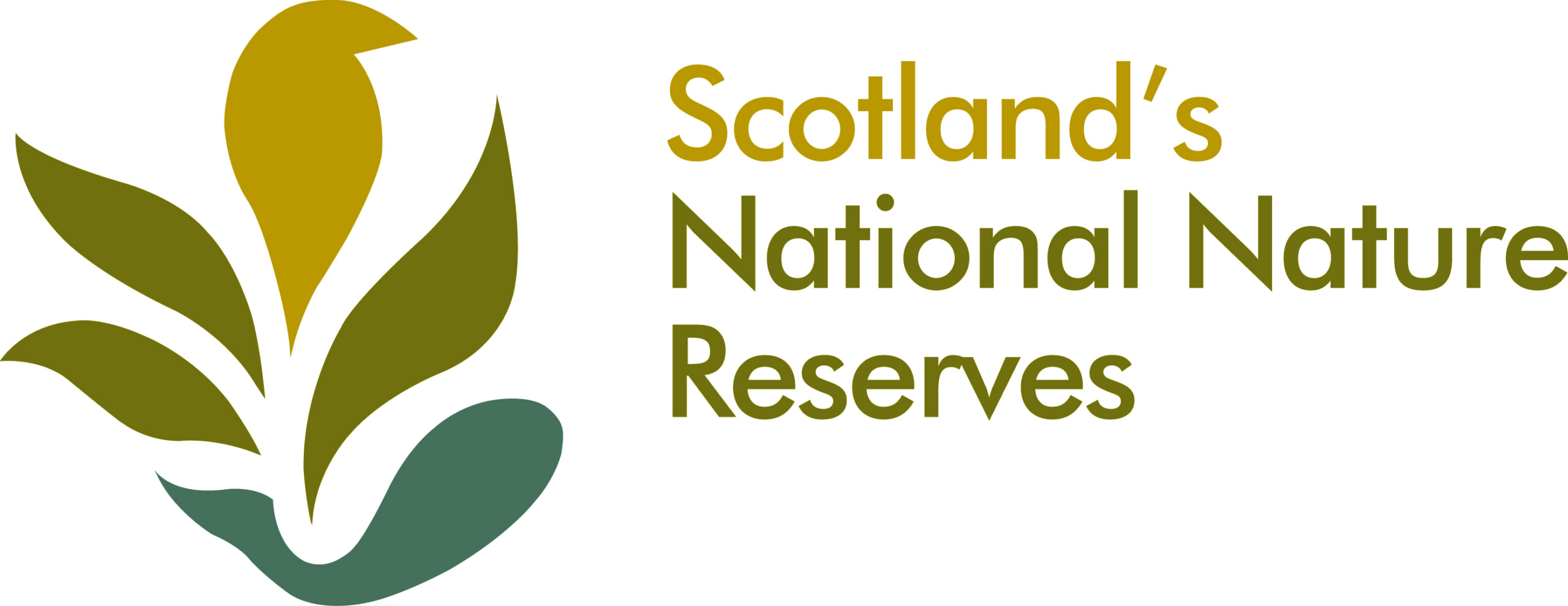 The Great Trossachs Forest - Outdoor Learning Directory